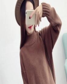 高领毛衣女套头春秋新款加厚韩版宽松短款学生打底衫